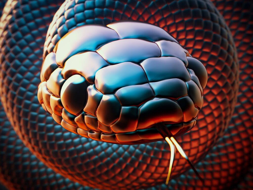 Venomous Snakes: How to Avoid Snake Bites and What To Do When You Can't